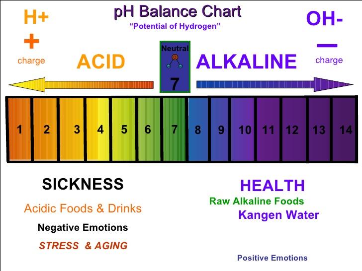 ph levels